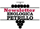 Newsletter Enologica Petrillo